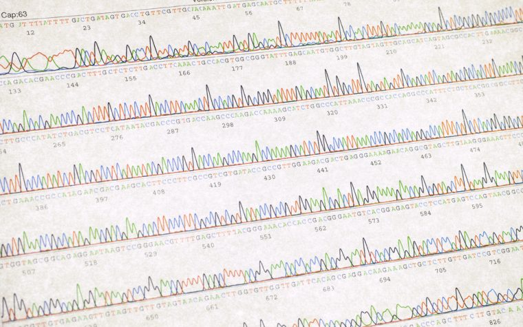 epilepsy and gene variants