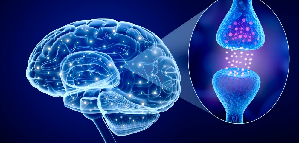 New Product May Help Advance Knowledge of Epilepsy, Possibly Control Brain Activity